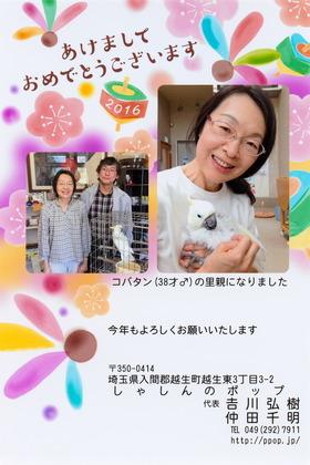 160101nenga-pop_m.JPG
