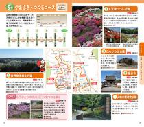 160301_ogoseP12-13_web.jpg
