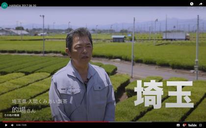 170620_harada-tea_101.JPG