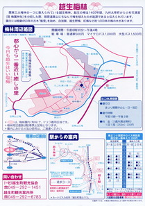 210213-0321_ogose_umematsuri_202_L.JPG