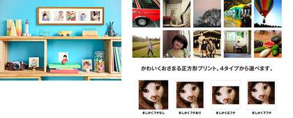 service003_img_03.jpg